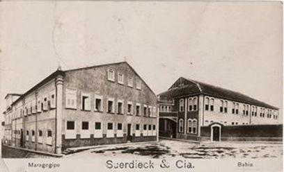 Suerdieck-de-Maragogipe site da UFRB.jpg