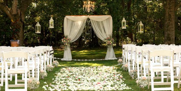 white curtain backdrop.jpg