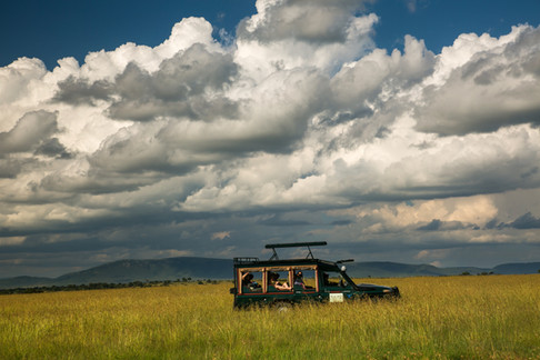 Landcruiser in conservancy.jpg