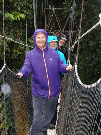 Forest canopy walk in Rwanda.jpg