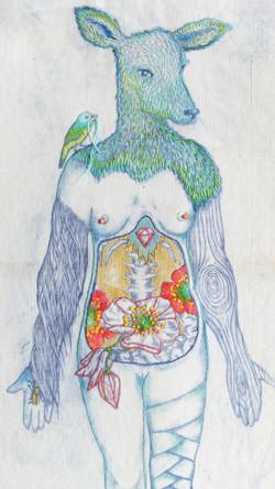 La biche n°4 (5)