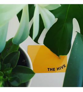 Get a Hive Card and receive 10% off your Acupuncture treatments