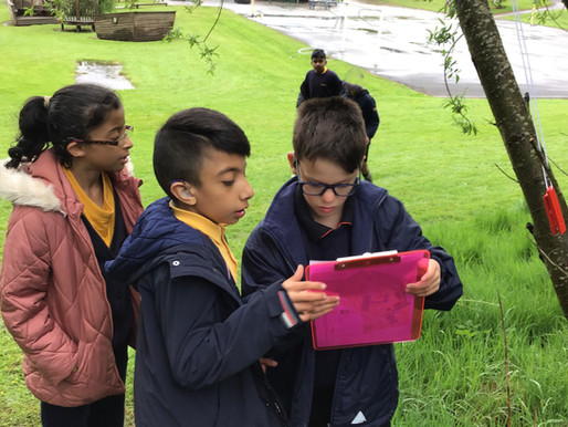Year 5 and 6 took part in the school orienteering competition,