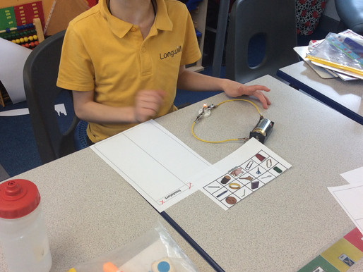 Sunflower Class (Y5) added different materials to electrical circuits, to determine whether the mate