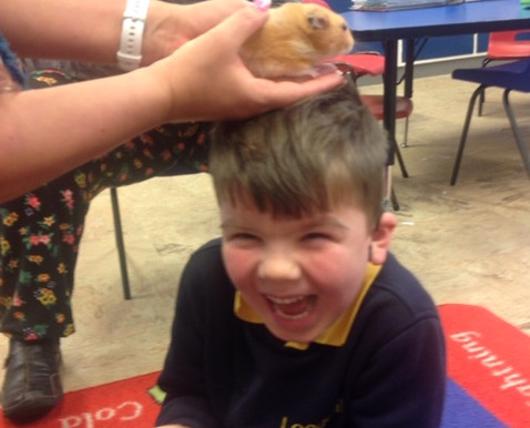 In Science this week, Buttercup Class (Y1) have been learning about what is meant by alive, never al