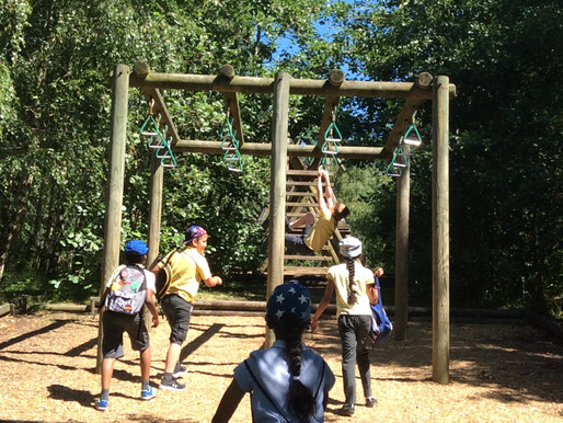 Year 5 enjoying their day at Conkers, exploring the activity trail, playing in the park and eating i