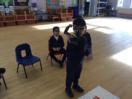Year 1 (Dolphin Class) have been exploring the different sounds and vibrations