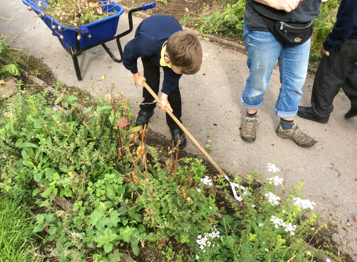 Tulip Class (Year 5) have been working hard tidying up the gardens ready for Autumn.