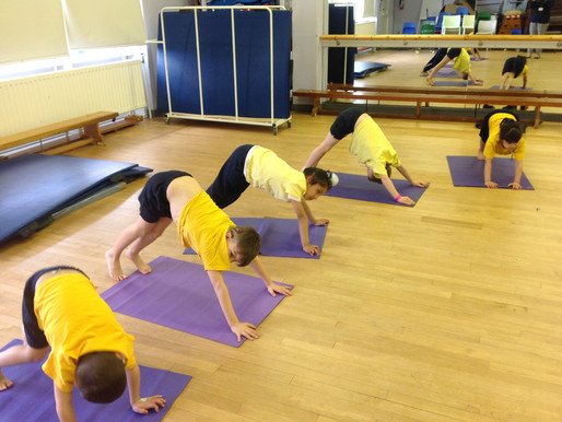 Year 1 and Year 2 had their final Yogabugs session this week!