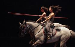We were horses