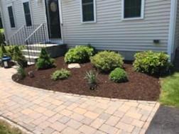 Fresh Mulch Front Yard