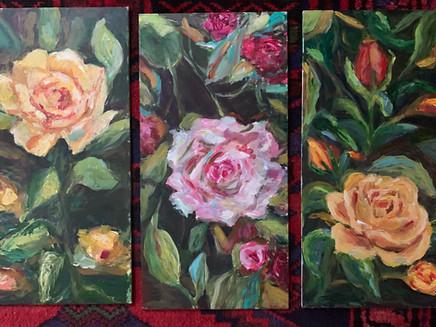 Roses phantasy