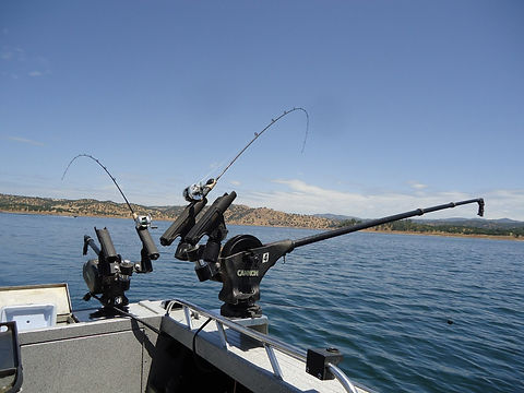 sierrasportfishing 6.JPG