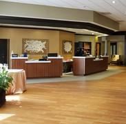 _Nebula 1 & 2_, 48_x60_, Hilton Hotel, R