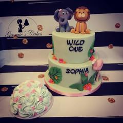 Wild One cake - Georgie's Cakes.jpg