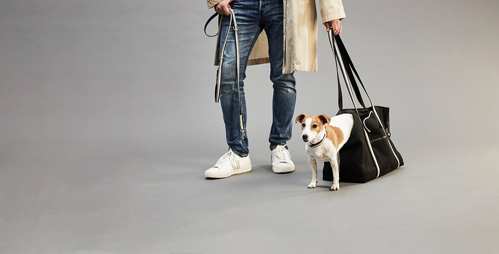 style for pets and owners, Hundetaschen, Hundeleinen, Accessoires, top dog cool cat, pets accessories, leashes, collars, dog bags