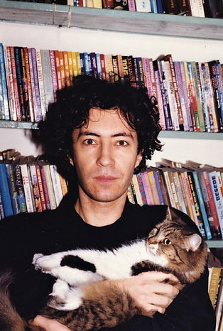 cat-library.jpg
