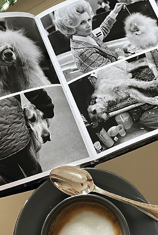 magazine+tea.jpg