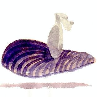 dog-striped-bed.jpg