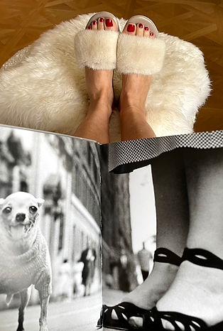 tdcc-book-slippers.jpg