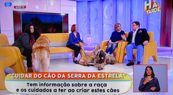 "National TV show ""Há Tarde"""