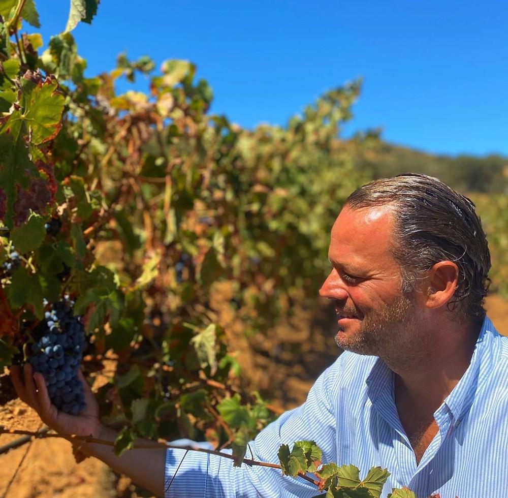 Alentejo Portugal Wine winemaking & winetasting - Herdade do Sobroso Wines