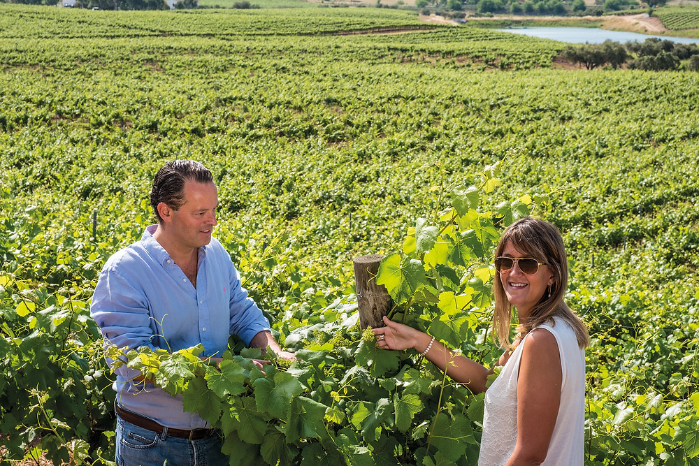 Alentejo Wines Portugal Winetasting & Winemaking