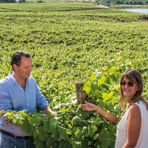 Producer Q & A: Filipe Teixeira of Herdade do Sobroso, Alentejo, Portugal