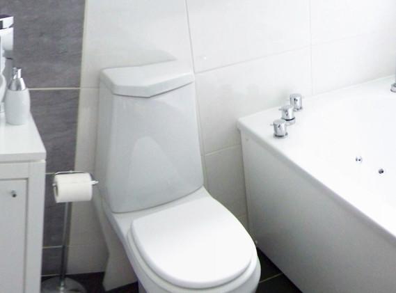 terry%20bathroom%2020-07-08%20033.JPG
