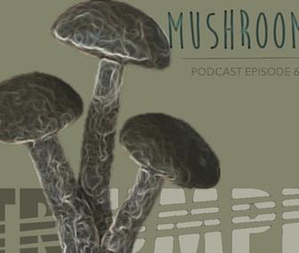 TRIUMPH PODCAST 6.0_MUSHROOMS