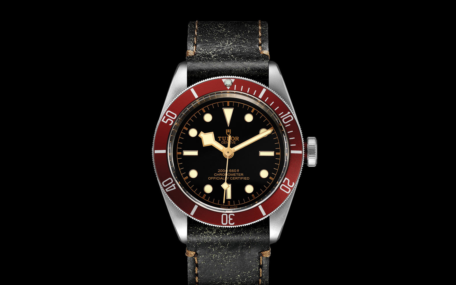 TUDOR_BLACK BAY M79230R-0011