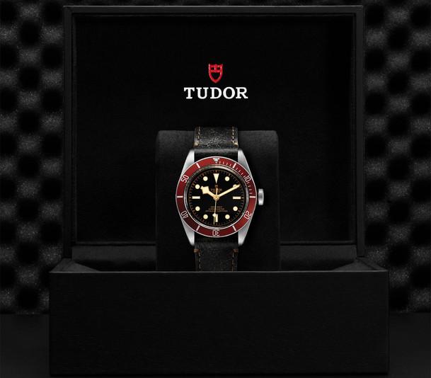 TUDOR_BLACK BAY M79230R-0011