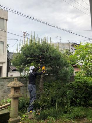 松江市内 ガーデンリフォーム始まりました