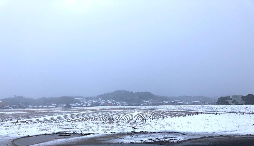 出雲市の冬