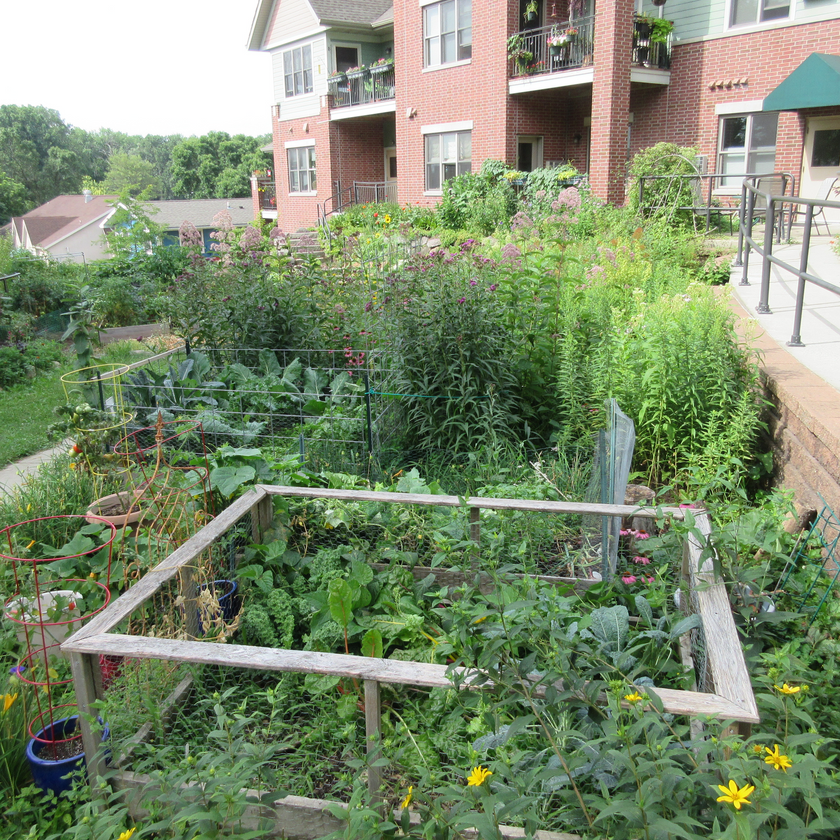 Lush flower and vegetable gardens with the building in the background and a sidewalk winding around the garden.