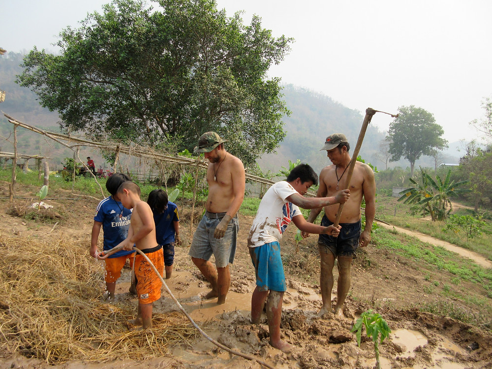 Three chien and two men are stomping barefoot in water, straw, and mud.  One boy is using a hoe, another one is using a hose.