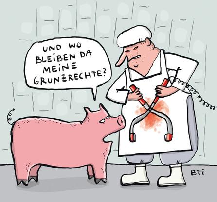 Schweinwiderstand