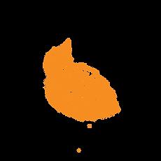 shiso light orange.png