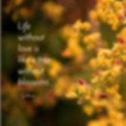 Inspirational meme, God, Living in Bloom, bloom, flower, budding, life, new life, life changing, inspirational, quote, meme, inspirational quote, Mary Abraham, Detroit, MI, Michigan, positive, writer, author, motivational quote, Gibran, quote, Gibran quote