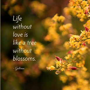 Inspirational meme, God, Living in Bloom, bloom, flower, budding, life, new life, life changing, inspirational, quote, meme, inspirational quote, Mary Abraham, Detroit, MI, Michigan, positive, writer, author, motivational quote, Gibran, quote, Gibran quote