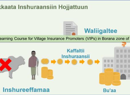 IBLI eLearning course for village insurance promoters (VIPs) in Borana zone of Ethiopia
