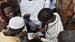 Livestock insurance gains ground in Africa