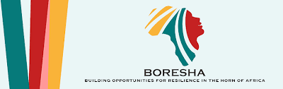 IBLI-BORESHA Project in Mandera