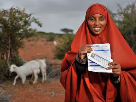 Technical support to the Kenyan Livestock Insurance Program (KLIP)