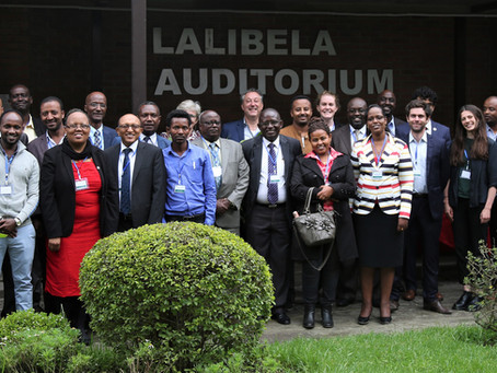 It's all systems go for the scaling up of index-based livestock insurance in Ethiopia