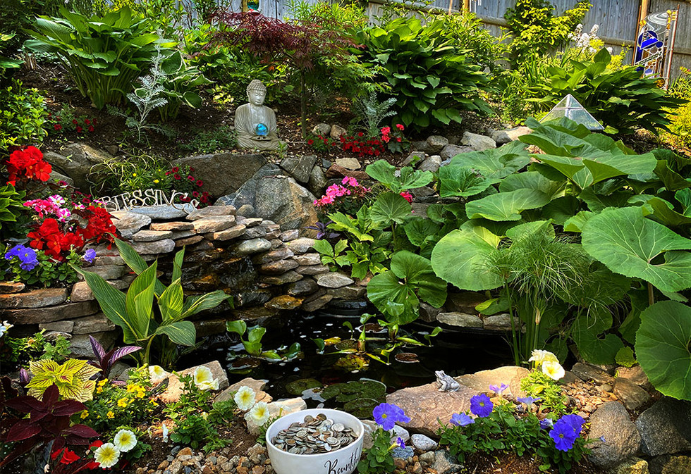 Our Calming Waterfall