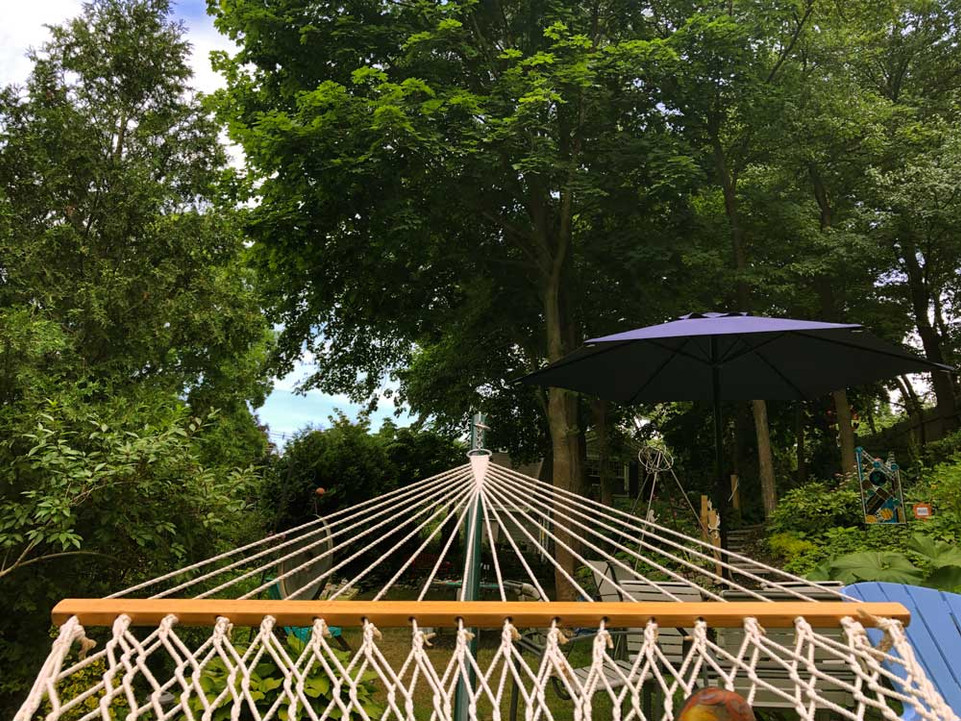 A View from the Hammock