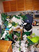 Nettoyage après diogène.jpg