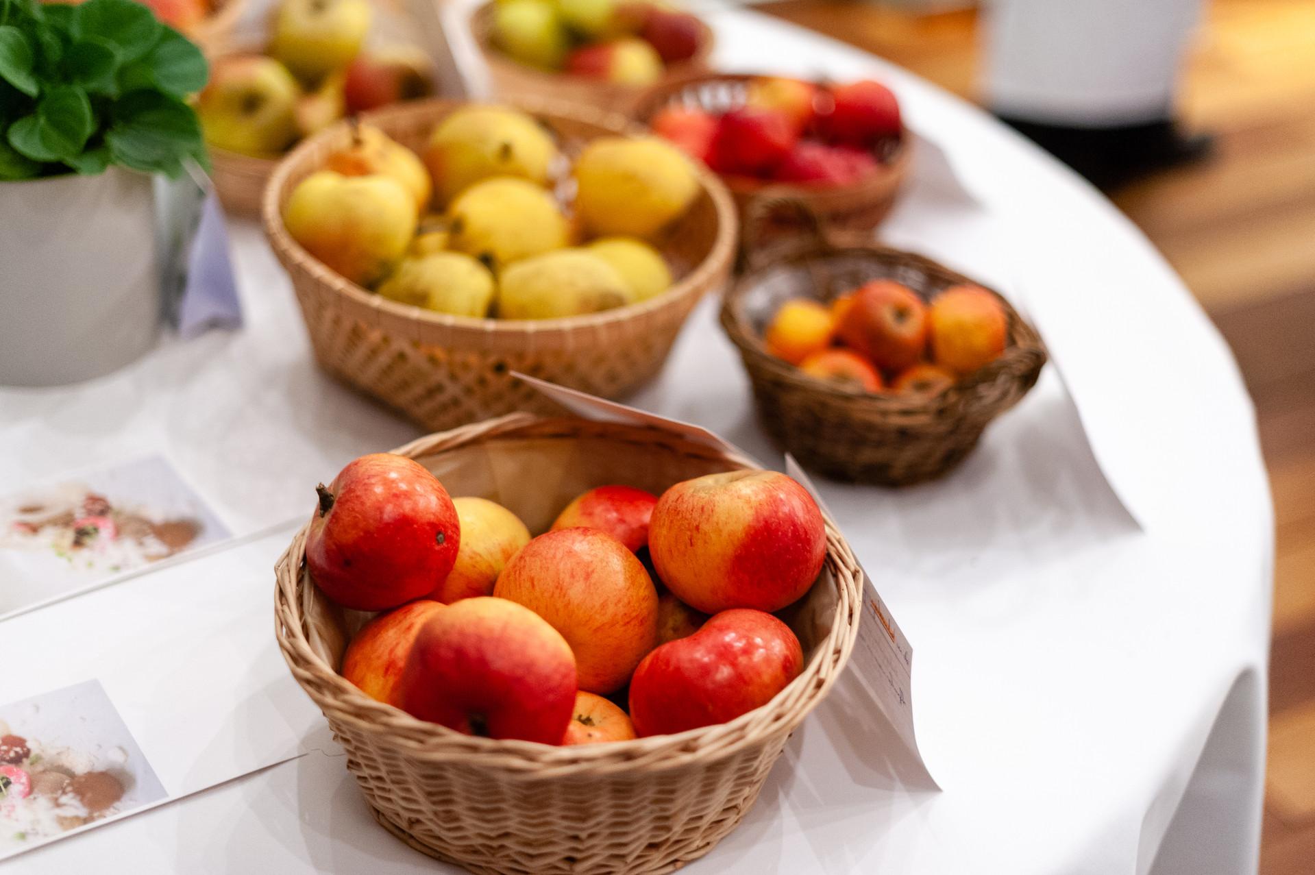 Recherche Pommes