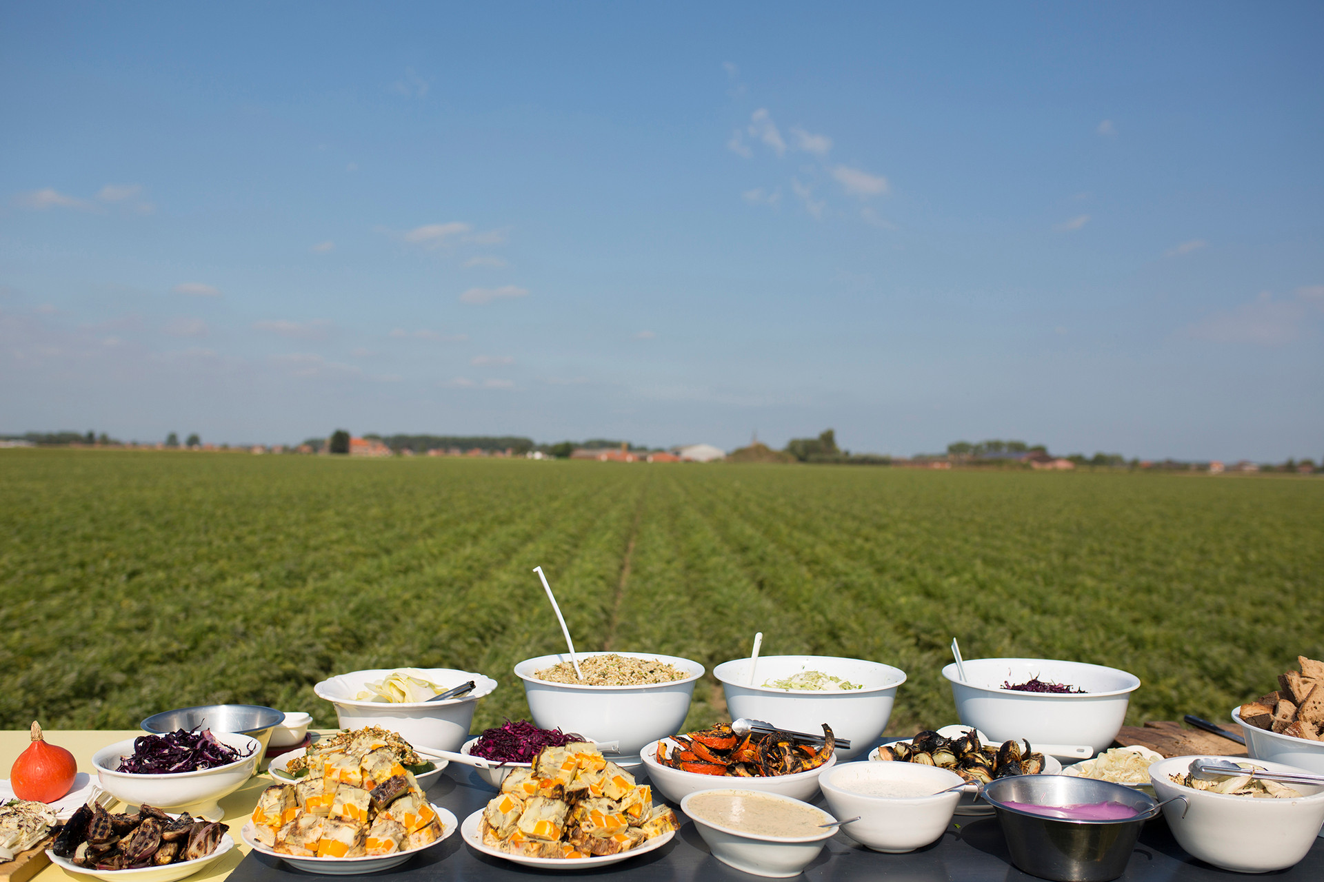 Experience Dining in the Field